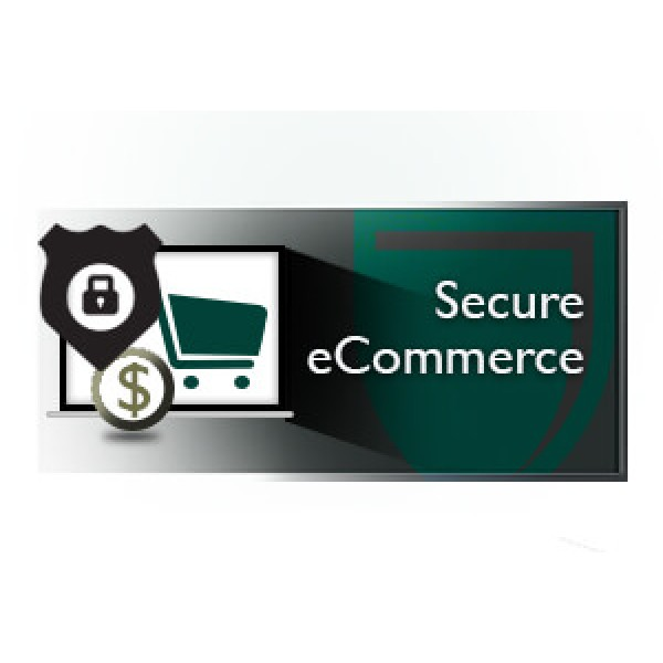 Secure e-Commerce